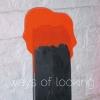 Ways of Looking 0104 Delabole Slate & Fluorescent Acrylic 2001